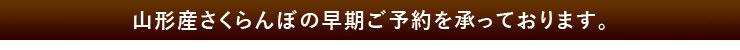 さくらんぼ「佐藤錦」の早期ご予約受付スタート