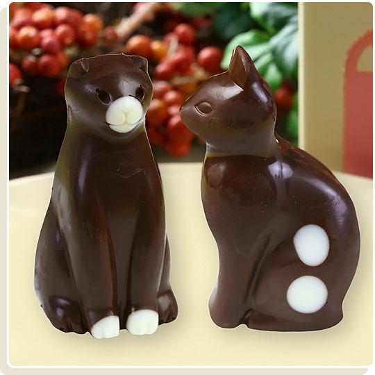 猫のチョコレート