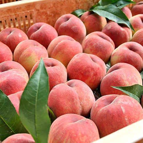 桃の写真3
