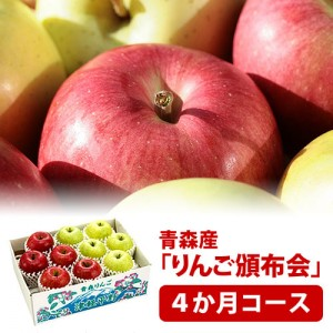 hnp04-apple4