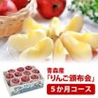 hnp05-apple2