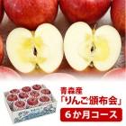 hnp06-apple1