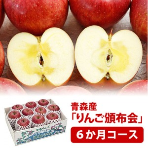 hnp06-apple1
