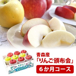 hnp06-apple3