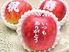 りんごでメッセージ(文字入り林檎)