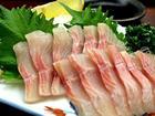 イワナ(岩魚)